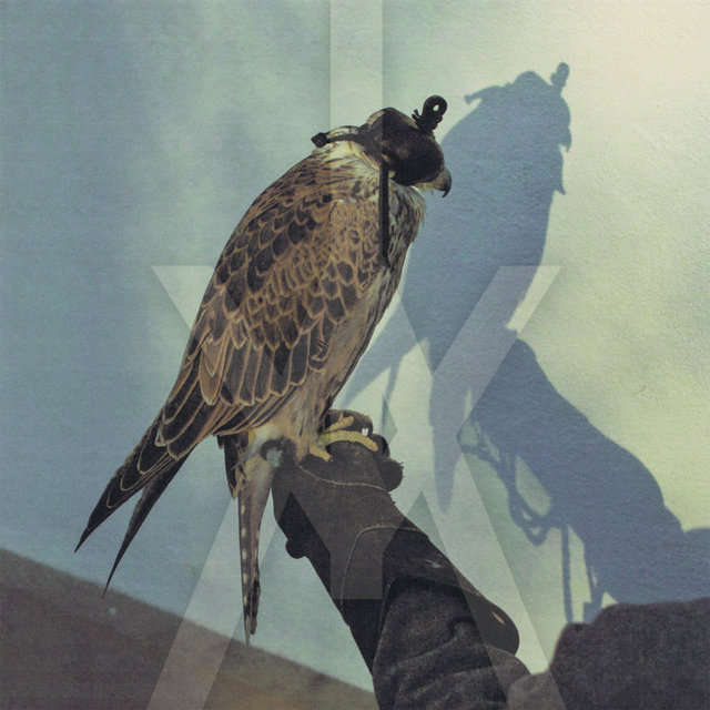 Cover art for album You're Nothing by iceage