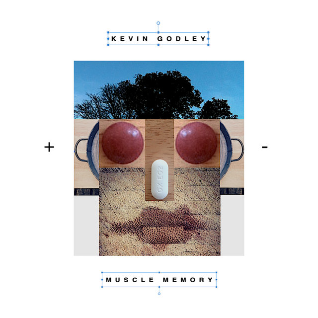Cover art for album Muscle Memory by Kevin Godley