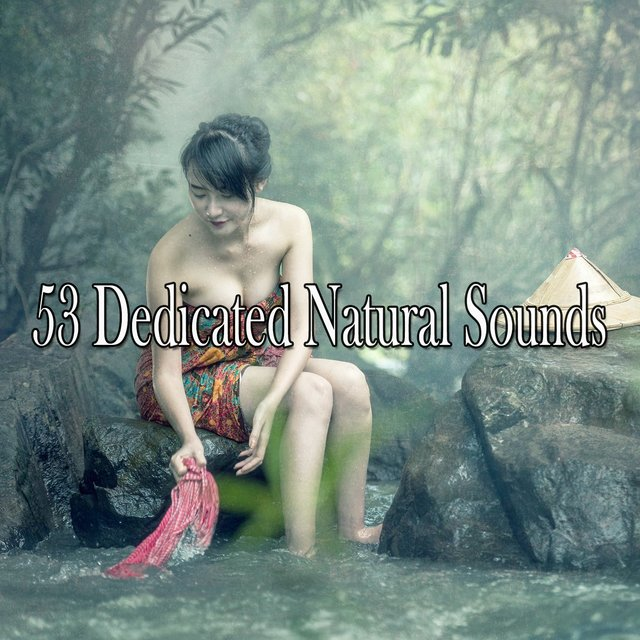 53 Dedicated Natural Sounds