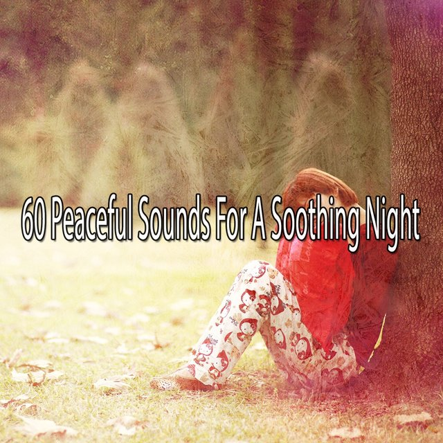 60 Peaceful Sounds for a Soothing Night
