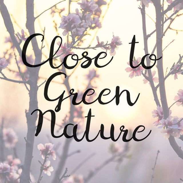 Close to Green Nature – Collection of 15 Blissful Nature Sounds Excellent for Relaxation, Sleep, Spa and Learning