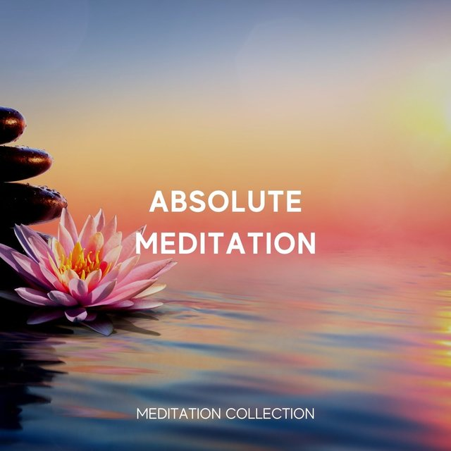 Absolute Meditation