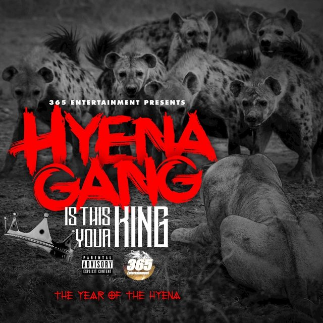 Is This Your King (Year Of The Hyena)