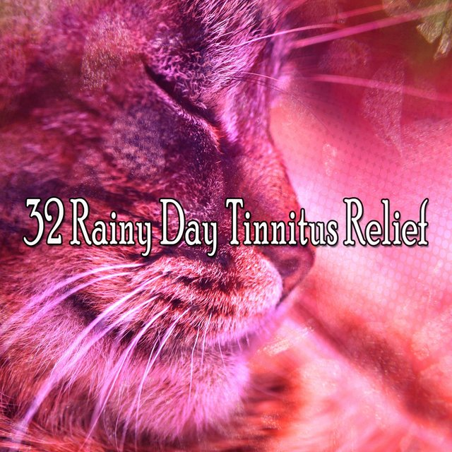 32 Rainy Day Tinnitus Relief
