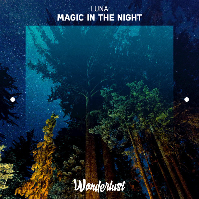 Magic in the Night - Single