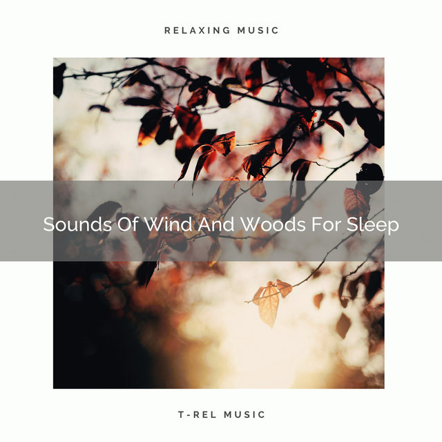 Sounds Of Wind And Woods For Sleep