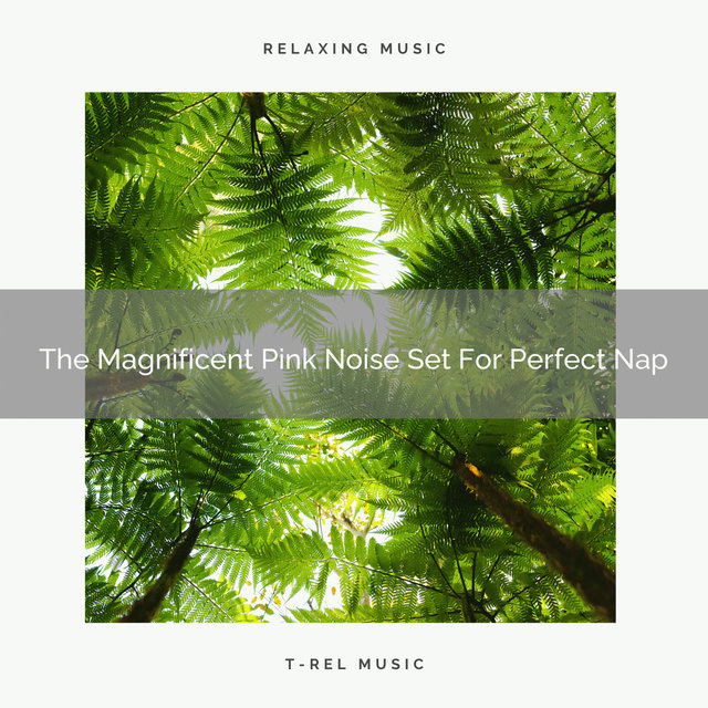 The Magnificent Pink Noise Set For Perfect Nap