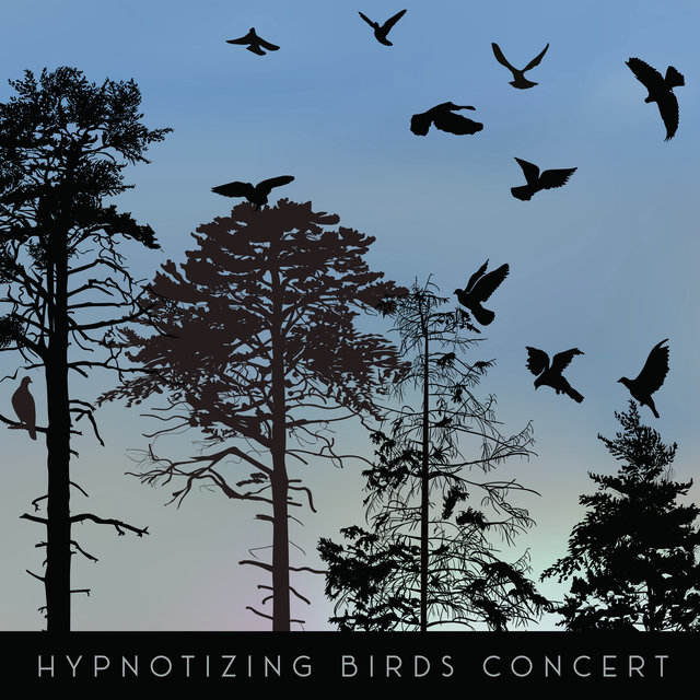 Hypnotizing Birds Concert – 1 Hour of Beautiful Forest Animals Sounds for Deep Relaxation, Sleep, Meditation and Study