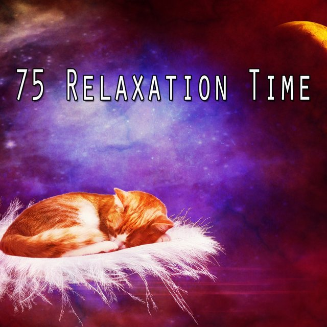 75 Relaxation Time