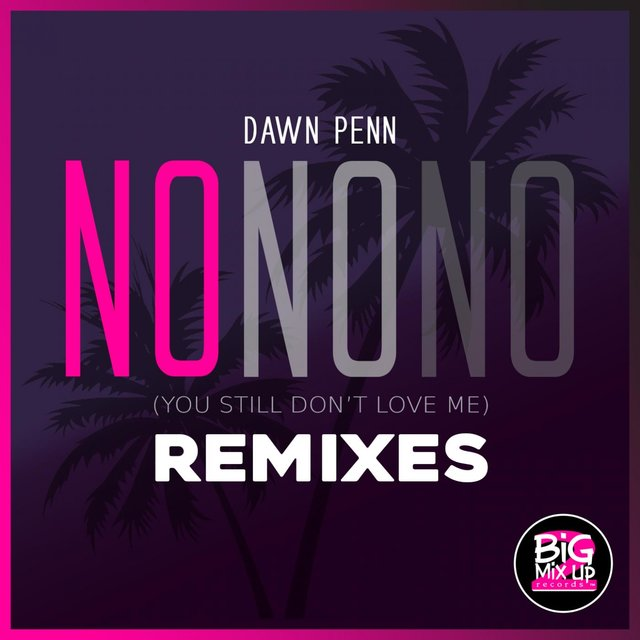 No No No (Remixes)