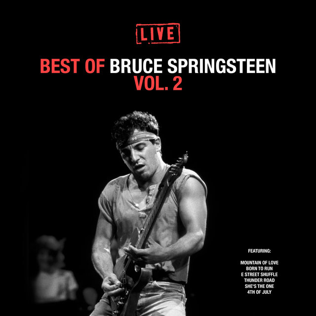 Best of Bruce Springsteen Vol. 2
