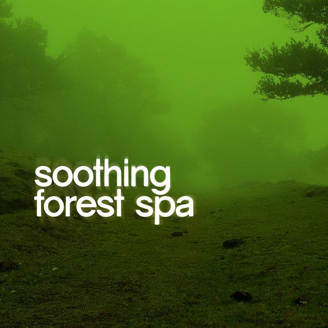 Soothing Forest Spa