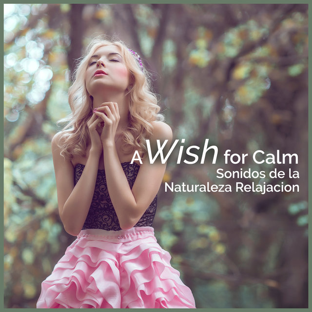 A Wish for Calm