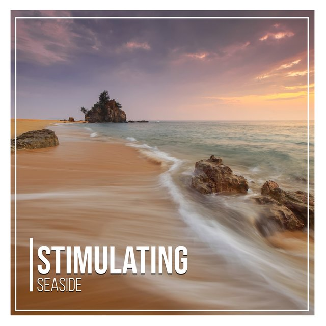 # Stimulating Seaside
