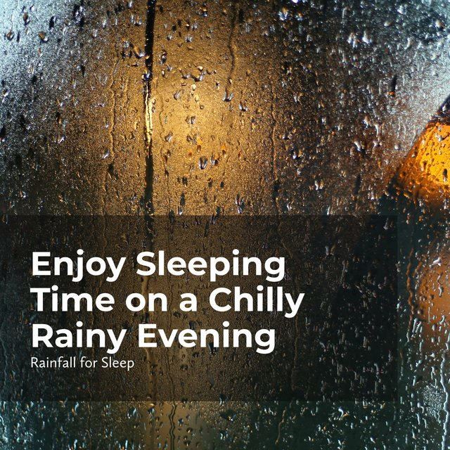 Enjoy Sleeping Time on a Chilly Rainy Evening