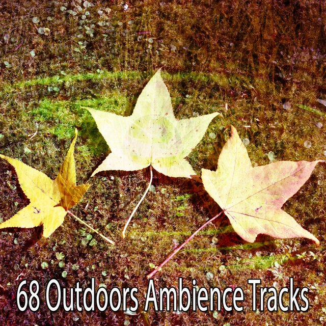 68 Outdoors Ambience Tracks