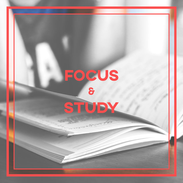 Focus & Study – Relaxing Sounds for Studying, Keep Calm, Pass Exams, Music to Help You Learning