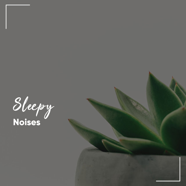 #13 Sleepy Noises for Zen Spa