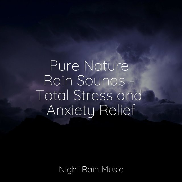 Pure Nature Rain Sounds - Total Stress and Anxiety Relief