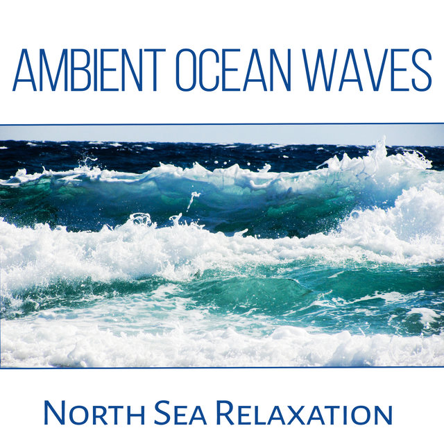 Ambient Ocean Waves: North Sea Relaxation, Yoga Music & Meditation, Crushing Waves, Seagulls, Nature & Liquid Sounds to Calm Down