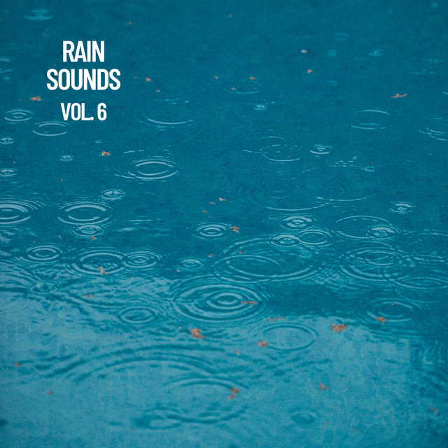 Rain Sounds Vol. 6, The Rain Library