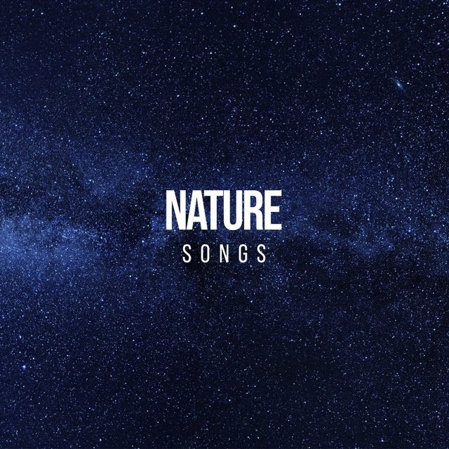 Peaceful Native Nature Songs