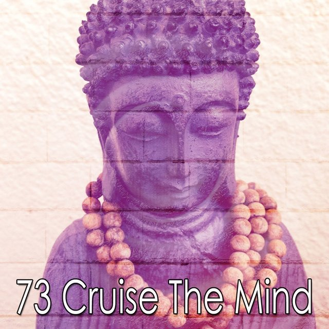 73 Cruise the Mind