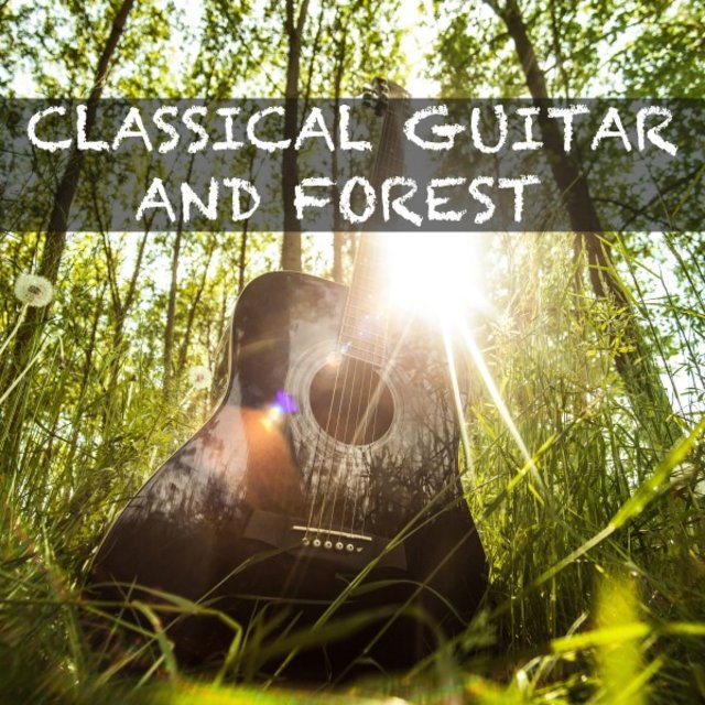 Classical Guitar and Forest