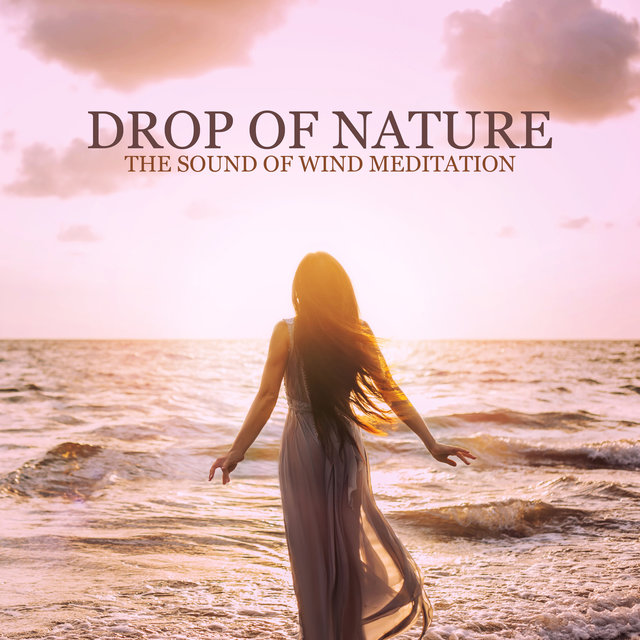 Drop of Nature - The Sound of Wind Meditation, Relaxing Sounds for Mindfulness, Peaceful Yoga, Sleep and Relaxation Music