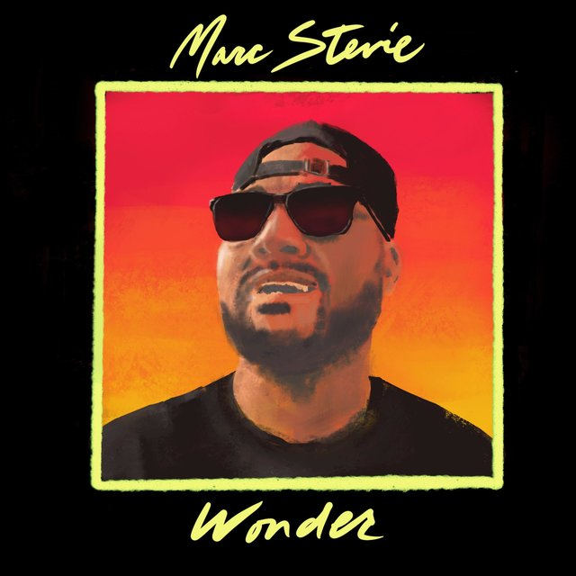 Marc Stevie Wonder
