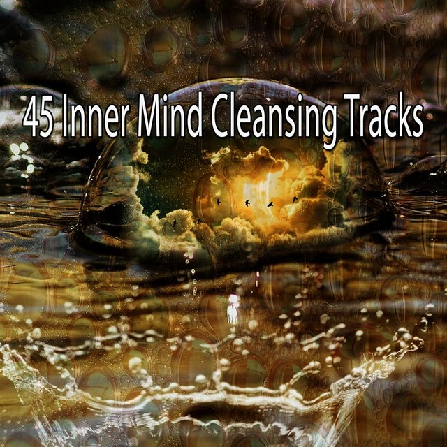 45 Inner Mind Cleansing Tracks