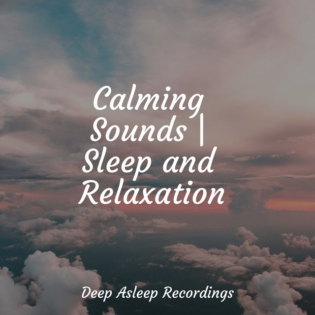 Calming Sounds | Sleep and Relaxation