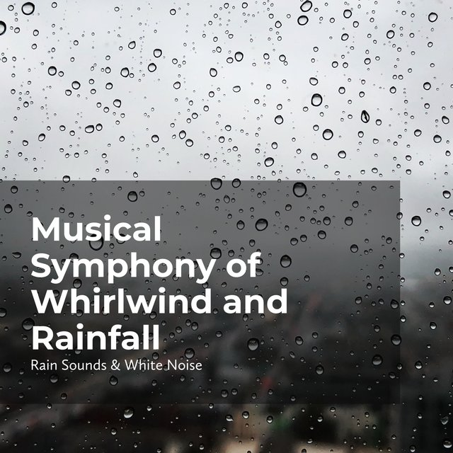 Musical Symphony of Whirlwind and Rainfall