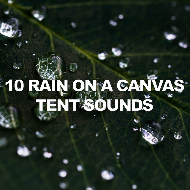 10 Rain On A Canvas Tent Sounds