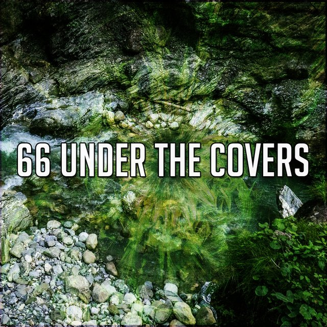 66 Under the Covers
