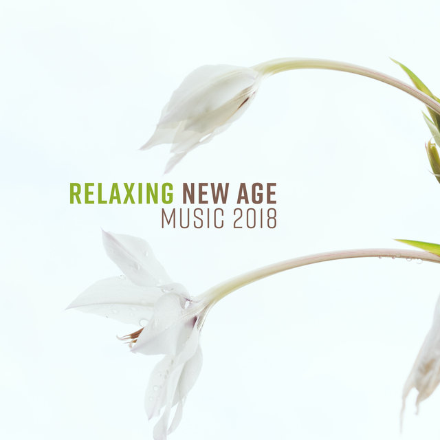 Relaxing New Age Music 2018