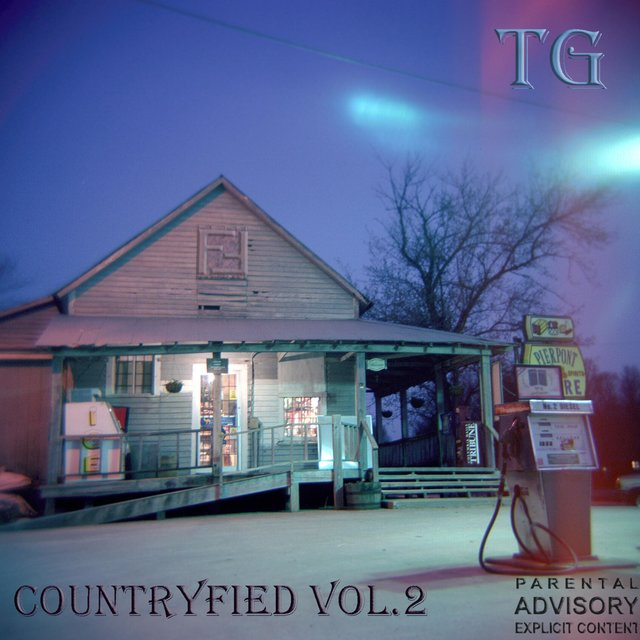 Countryfied, Vol. 2