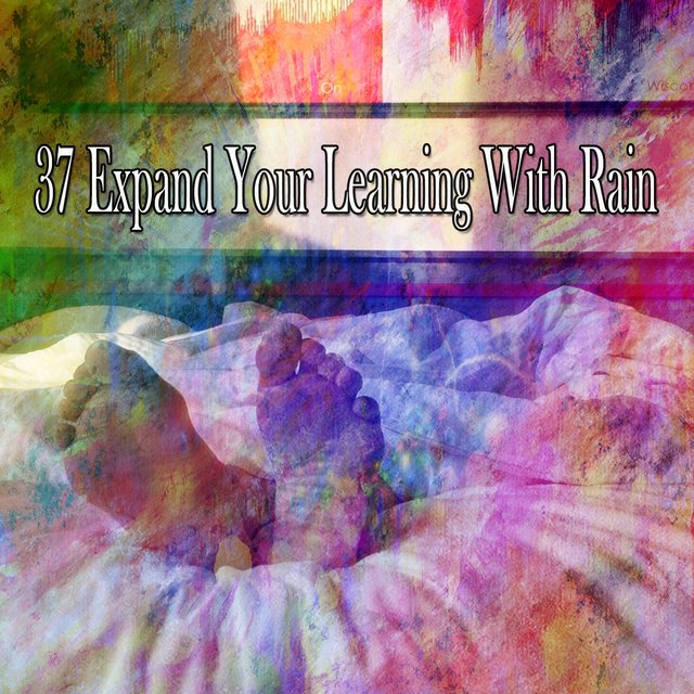 37 Expand Your Learning with Rain