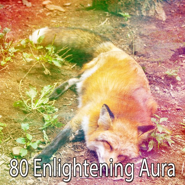 80 Enlightening Aura