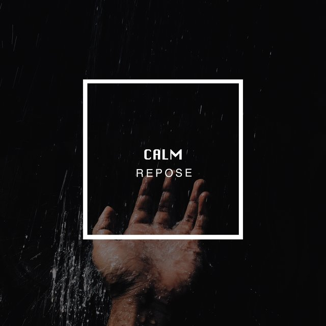 # 1 Album: Calm Repose