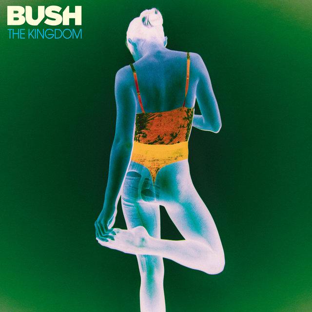 Cover art for album The Kingdom by Bush