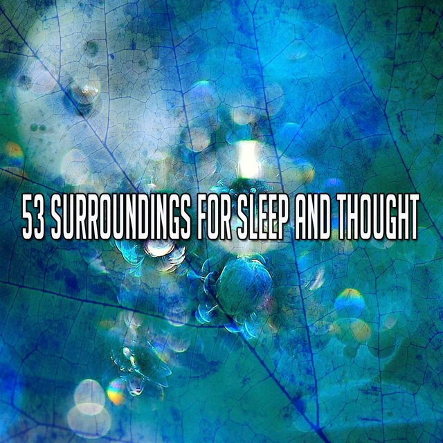 53 Surroundings for Sleep and Thought