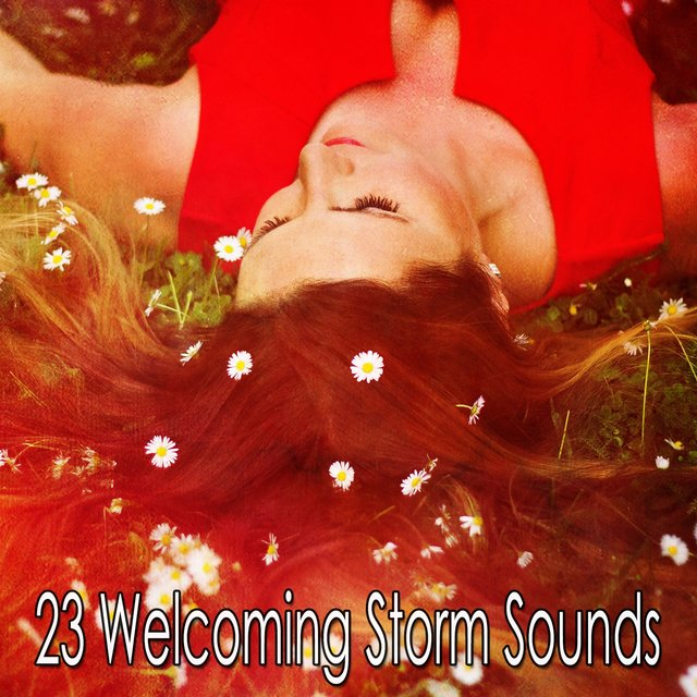 23 Welcoming Storm Sounds