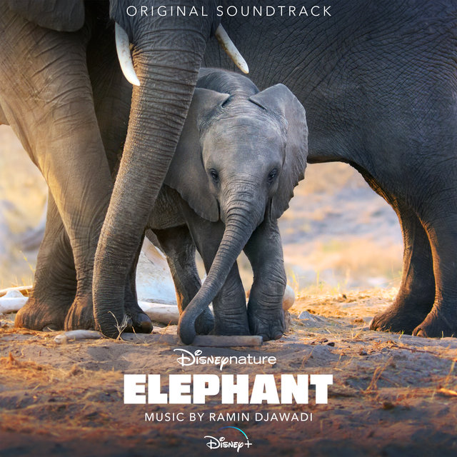 Elephant (Original Soundtrack)