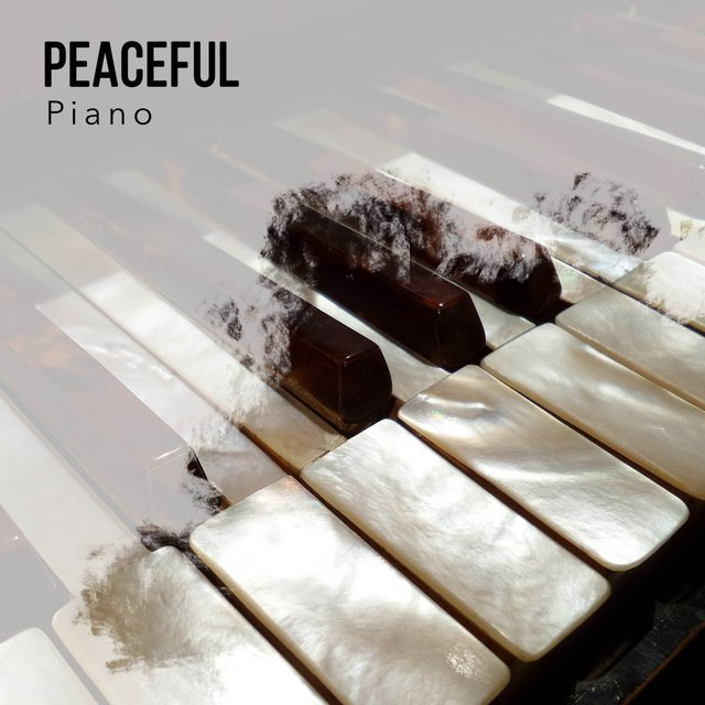 Peaceful Evening Piano Playlist