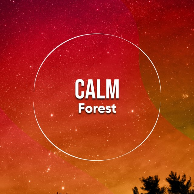 Calm Forest, Vol. 1