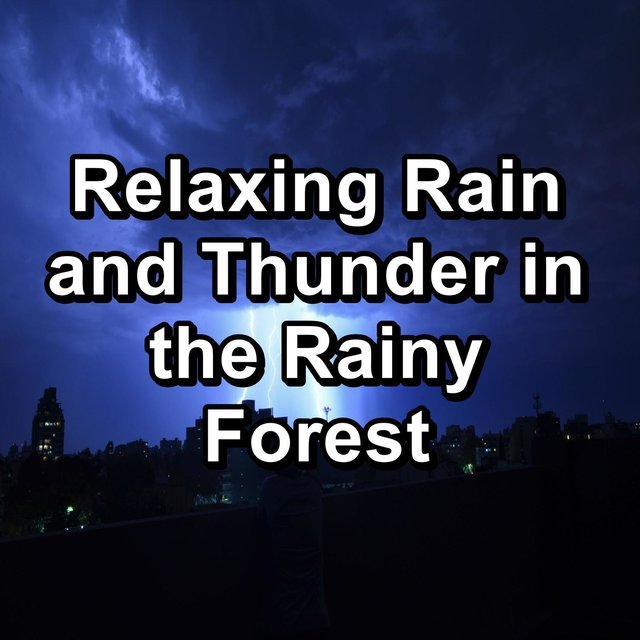 Relaxing Rain and Thunder in the Rainy Forest