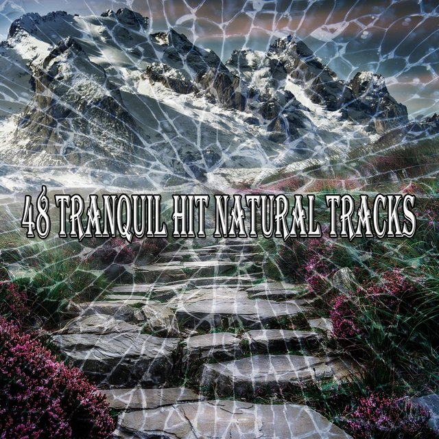 48 Tranquil Hit Natural Tracks