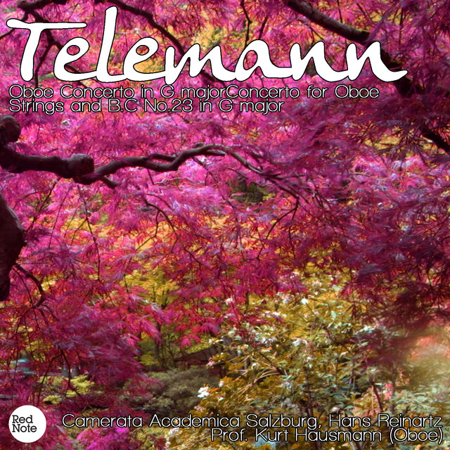 Telemann: Oboe Concerto in G majorConcerto for Oboe, Strings and B.C No.23 in G major