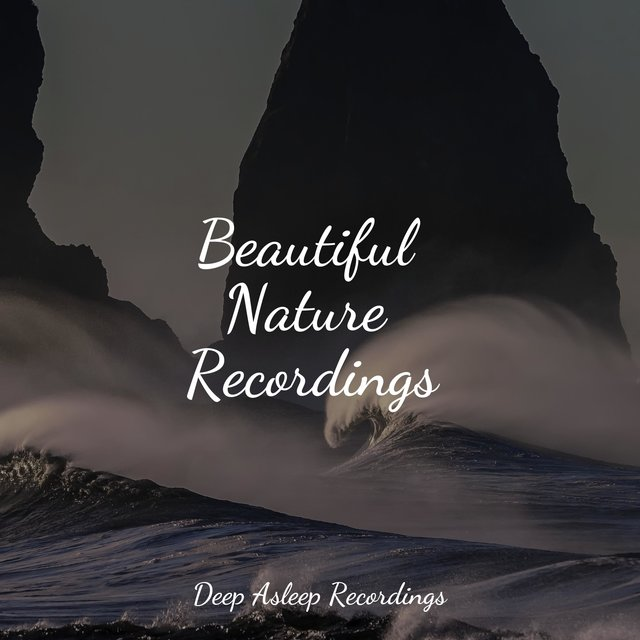 Beautiful Nature Recordings